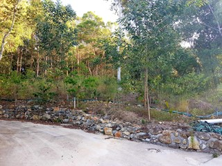 NESTLE YOUR HOME AMONGST THE TREES 995M2 MT COOLUM
